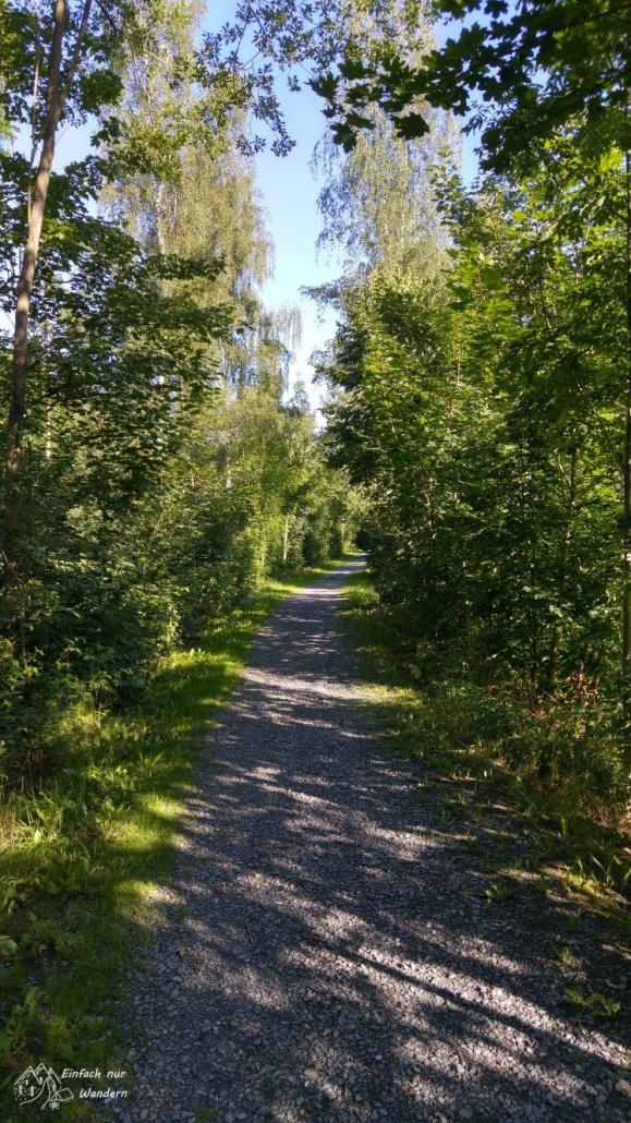 Ein Weg auf einem alten Bahndamm ist von Bäumen eingefasst.