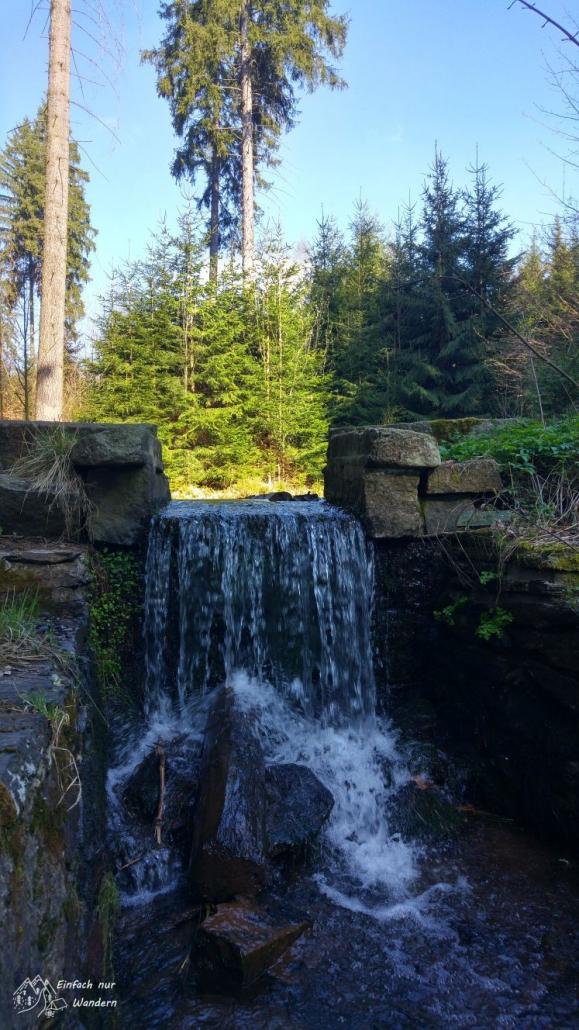 An einem Staubecken mitten im Wald ergießt sich ein Miniwasserfall herunter.