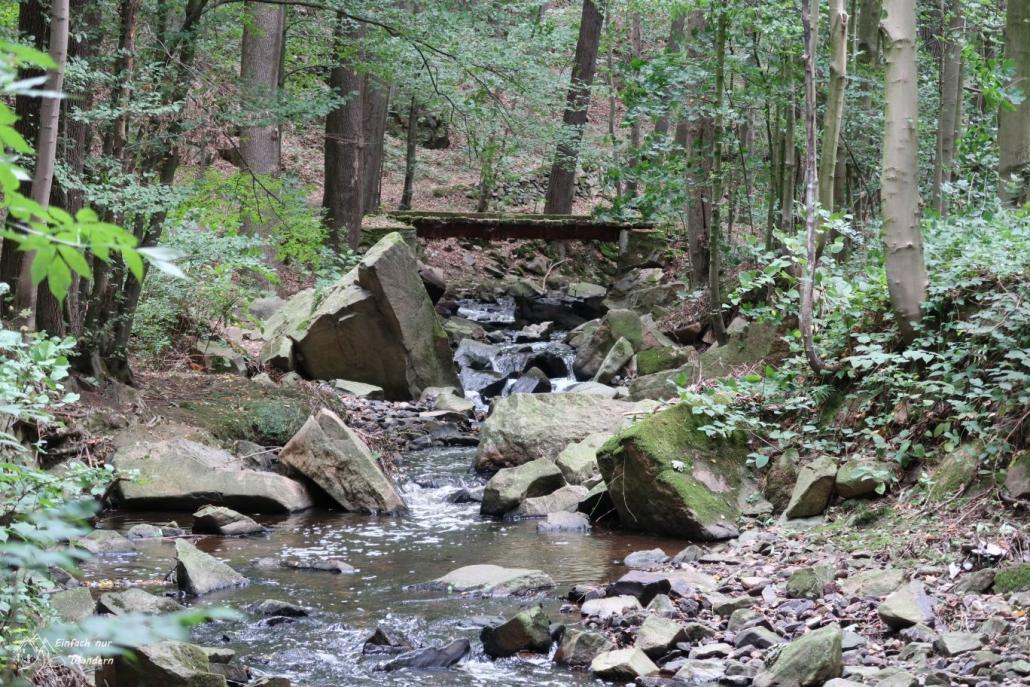 Der Brausebach im Brausetal fließt wie ein Gebirgsbach über viele Steine.