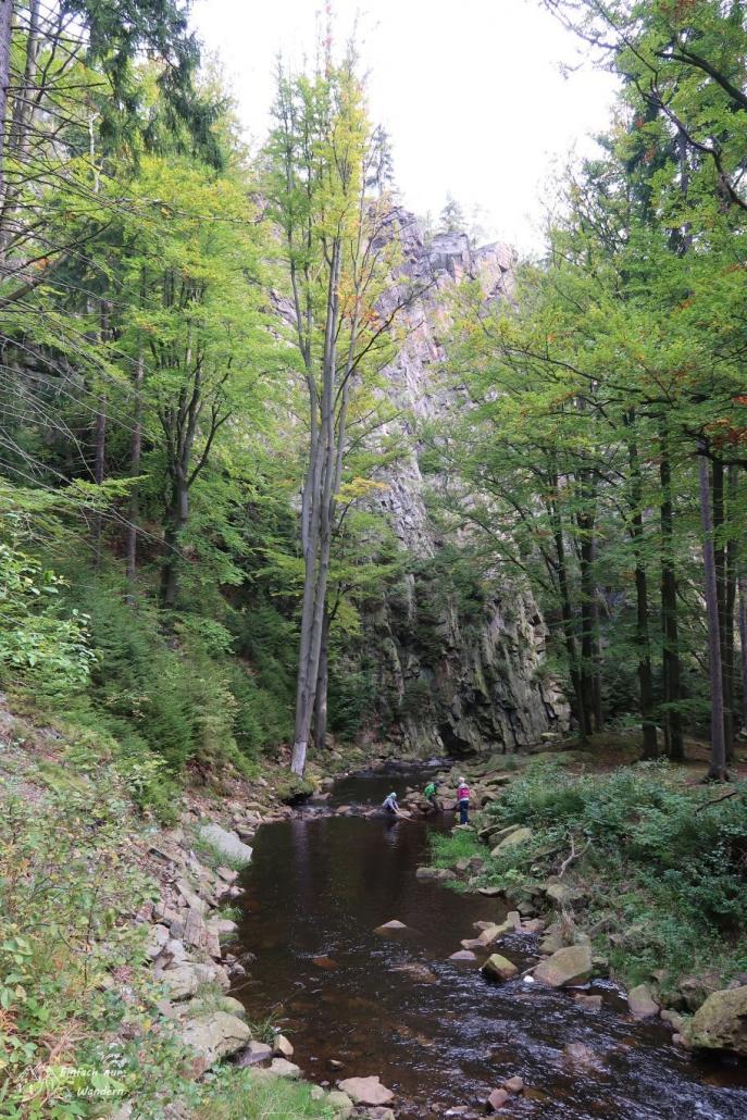 Die sogenannte Ringmauer ist ein Felsen neben dem Bachlauf.