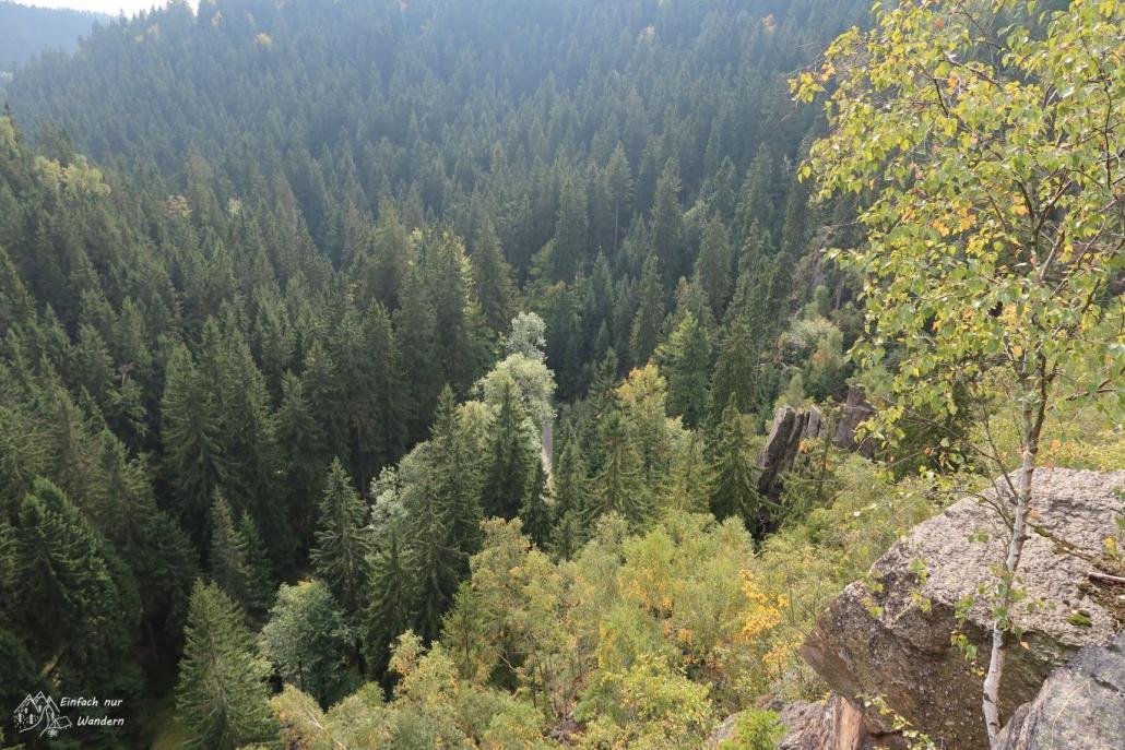 Blick vom Katzenstein ins Tal. Es sind fast nur Bäume zu sehen.