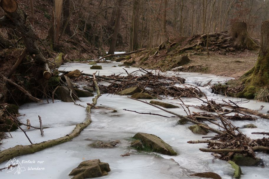 Der Zschonerbach ist zugefroren und lässt nur einige Steine und Holzstücke durchblicken.