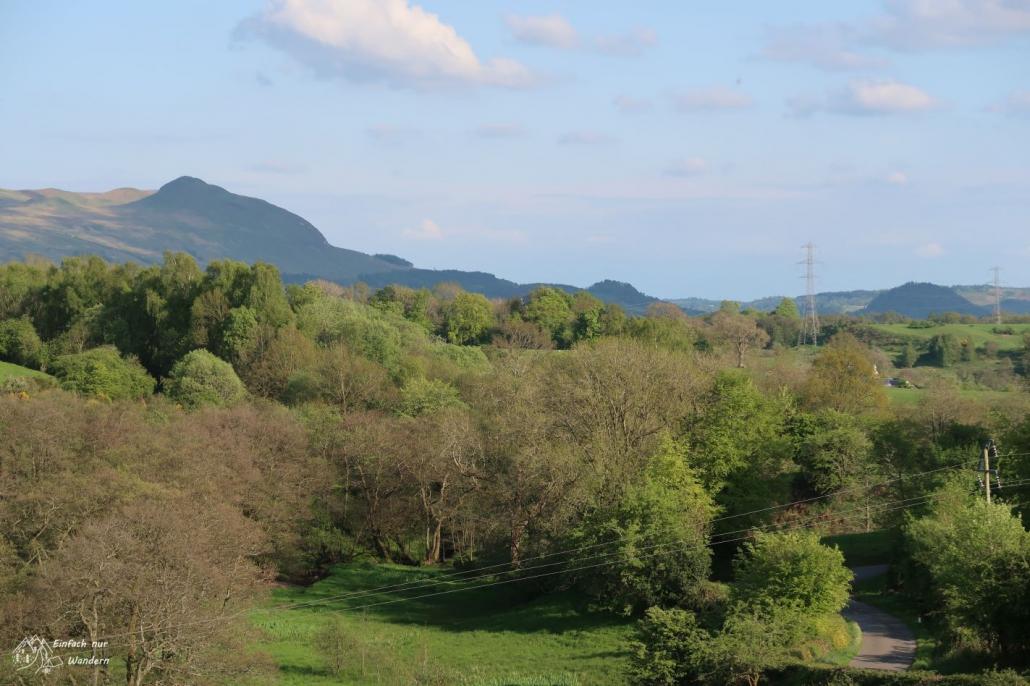 An diesem Abschnitt des West Highland Way gibt es noch viel Grün und Bäume.