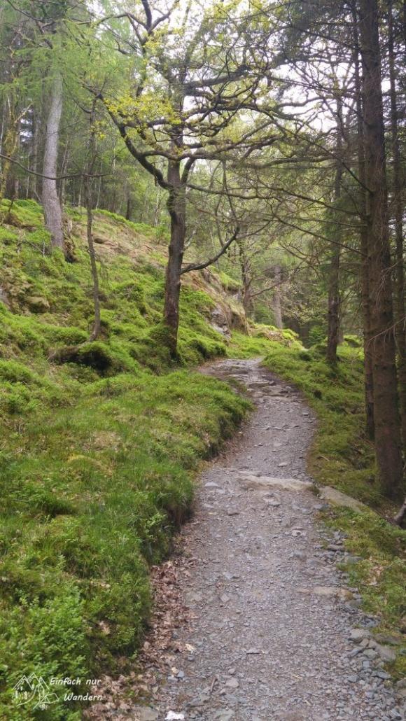Der West Highland Way ist am Ufer sehr abwechslungsreich.