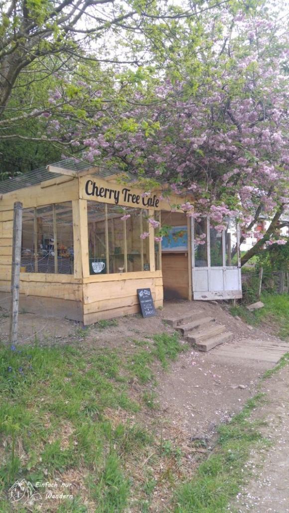 Die aus Brettern bestehende Huette des Cherry Tree Cafes war gemütlich und der Kuchen lecker.
