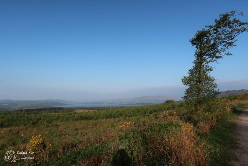 Aus dem Wald herausgekommen eröffnet sich ein toller Anblick über Loch Lomond.