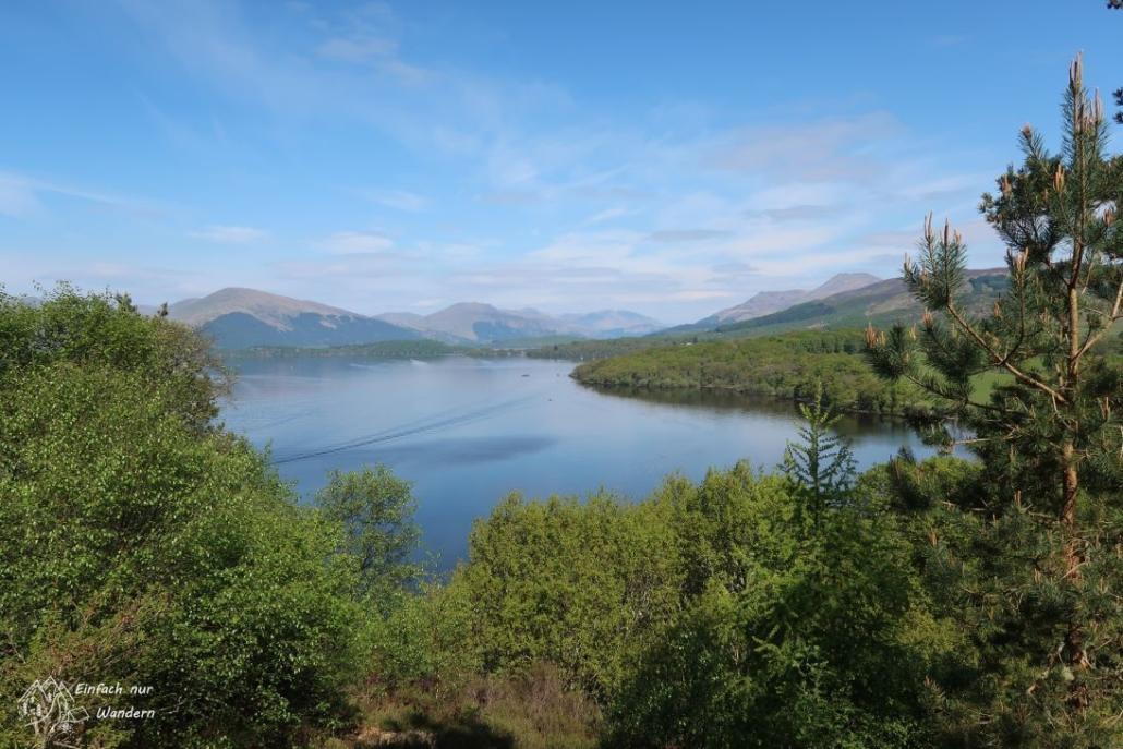 Kur nach Balmaha ein toller Ausblick auf Loch Lomond.