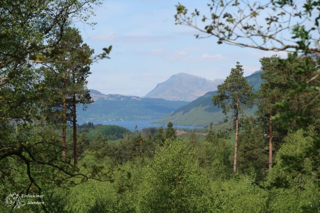 Ein Blick in Richtung Ende des Sees verrät uns, das die Highlands näher rücken.