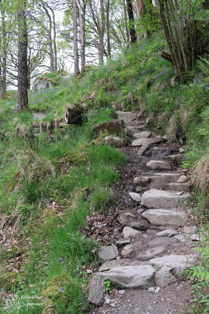 Beim auf und ab des Uferweges helfen oftmals kleine Treppen aus Stein.