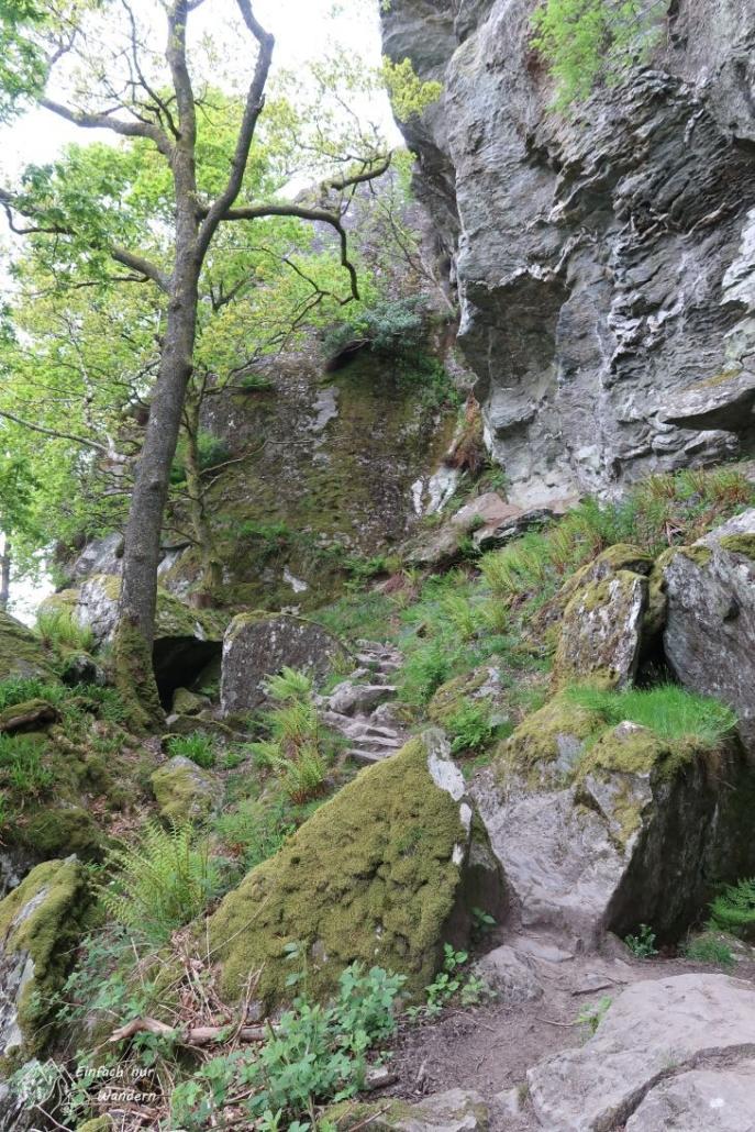 Der West Highland Way hat auch durchaus fordernde Passagen über Felsen.