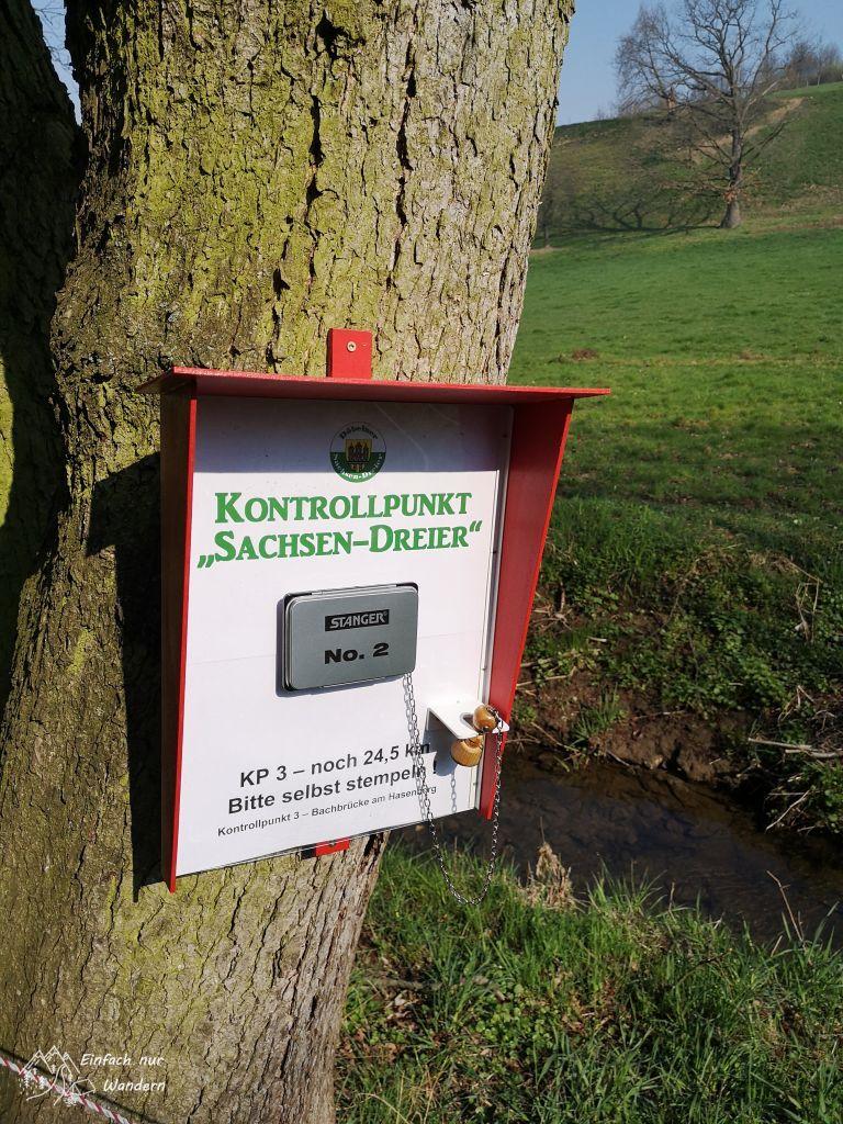 Eine Stempelstelle am Baum beim Sachsendreier.