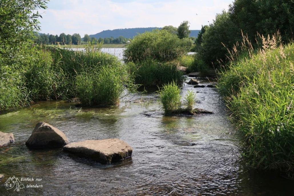 Der Schwarzbach plätschert so zwischen Steinen dahin.
