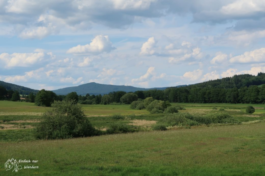 Vom Aussichtsturm können wir zu einem Berg nach Tschechien schauen.