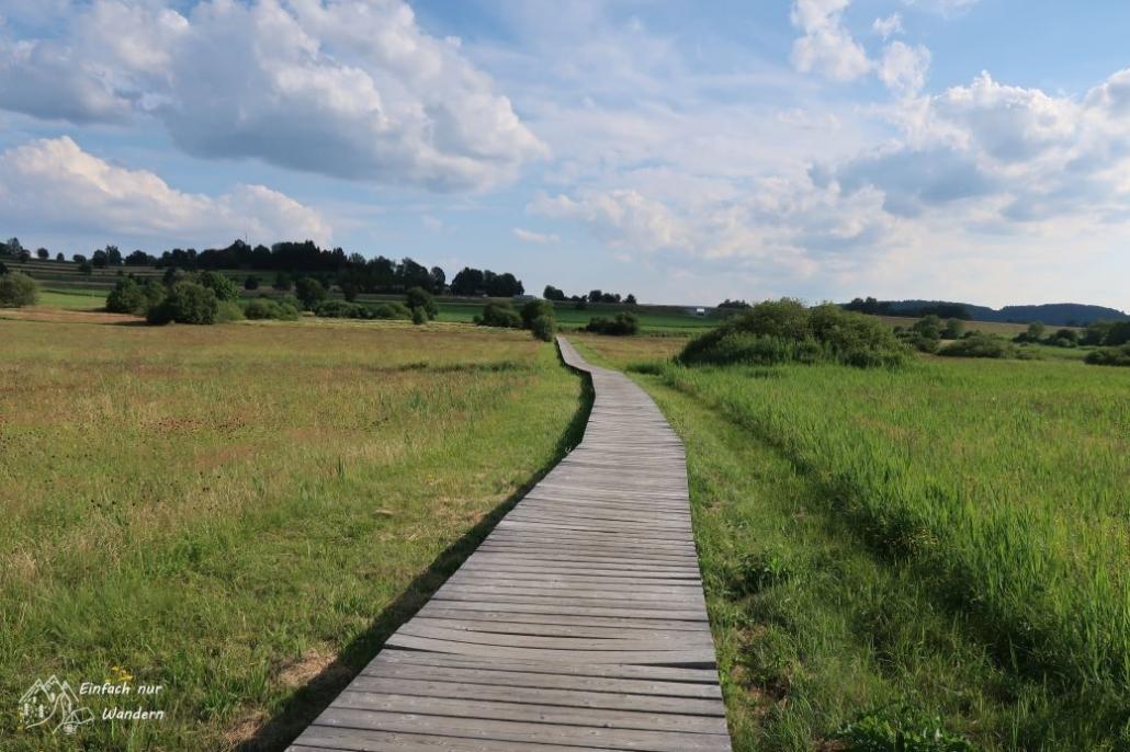 Zum Schluss laufen wir noch über einen Bohlenweg