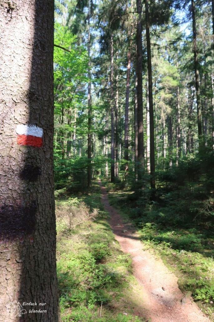 In Waldmünchen gehen wir den Untergrafenrieder Weg